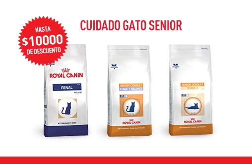 Imagen promoción Cuidado de gato senior