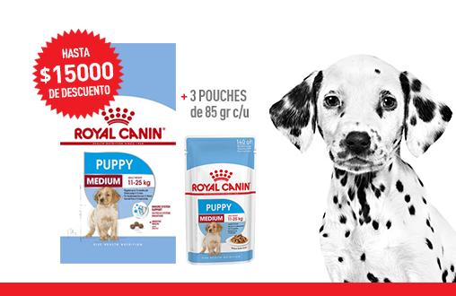 Imagen promoción Medium Puppy + Medium Puppy Húmedo