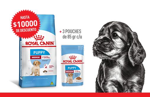 Imagen promoción Cachorros de talla mediana - Mix feeding