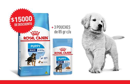 Imagen promoción Cachorros de talla grande - Mix feeding